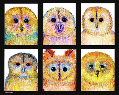 Painting - 6 Silly Owls by Jan Killian