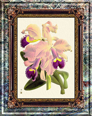 Keith Richards - Vintage Orchid Antique Design Marble Granita by Baptiste Posters