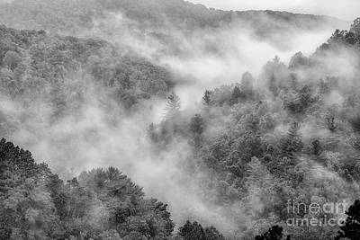 Photograph - Mountain Mist by Thomas R Fletcher