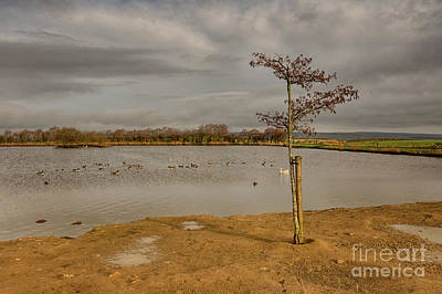 Photograph - Redcar Tarn In Keighley by Mariusz Talarek