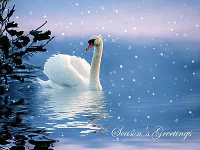 Photograph - Snow Swan Swim II by Jessica Jenney