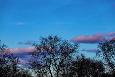 Photograph - Dramatic Sky Clouds And Trees by Robert Ullmann