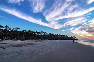 Photograph - Hunting Island Beach And State Park In South Carolina by Alex Grichenko