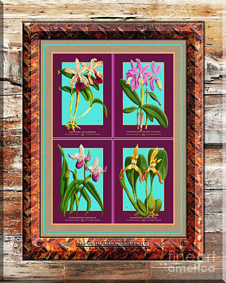 Red Roses - Antique Orchids Quatro on Rusted Metal and Weathered Wood Plank by Baptiste Posters