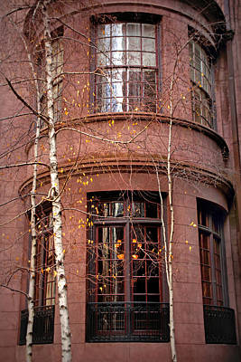 Photograph - Brownstone And Birch  by Jessica Jenney