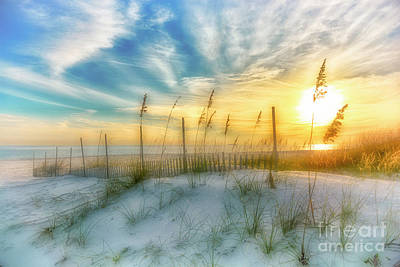 Photograph - A Beach Dream by Ken Johnson
