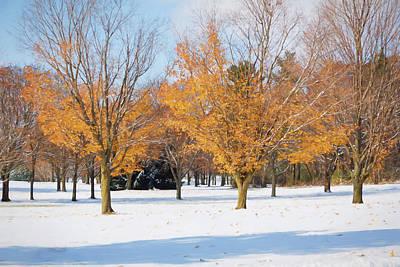 Photograph - A Blend Of Seasons by Kim Hojnacki