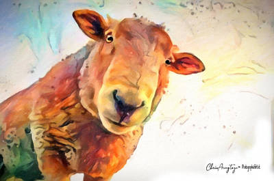 Painting - A Curious Sheep Called Shawn by Chris Armytage
