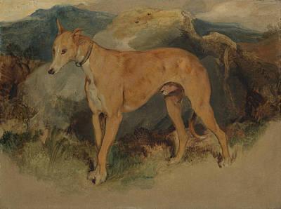 Painting - A Deerhound by Edwin Landseer
