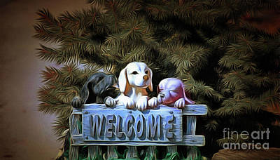 Photograph - A Dogs Welcome by Elaine Manley