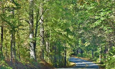 Photograph - A Favorite Road by Eileen Brymer