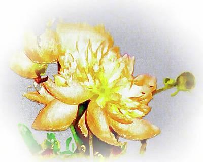 Digital Art - A Flower For Algernon by Mario Carini