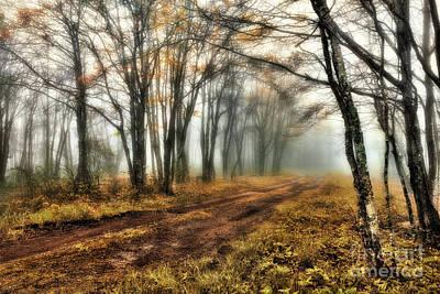 Photograph - A Foggy Autumn Blue Ridge Morning by Dan Carmichael