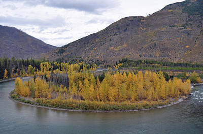 Photograph - A Glacier Autumn On The North Fork Of The Flathead River by Bruce Gourley
