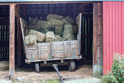 Photograph - A Hay Wagon by George Sheldon