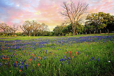 Photograph - A Heavenly Spring Sunset Colors The Hill Country by Lynn Bauer