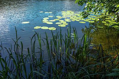 Roaring Red - A Lake Near Sweita Lipka, Northern Poland by Dubi Roman