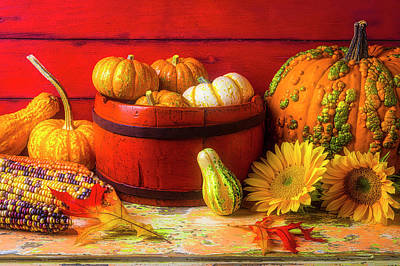 Photograph - A Lovely Autumn Still Life by Garry Gay
