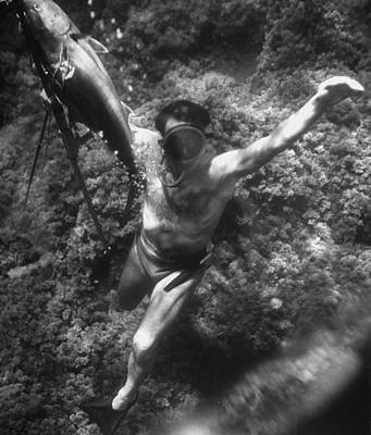 Photograph - A Man Spearing Fish Underwater.  Photo by Gordon Parks