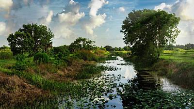 Photograph - A Morning In The Marsh  by Saija Lehtonen