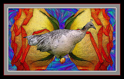 Fantasy Royalty-Free and Rights-Managed Images - A Peahen and a Rose by Constance Lowery