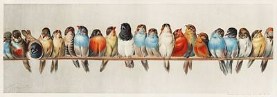 Animals Paintings - A Perch of Birds  1880 by Hector Giacomelli  1822-1904  by Celestial Images