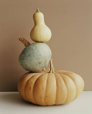 Photograph - A Pumpkin And Two Gourds by Victoria Pearson