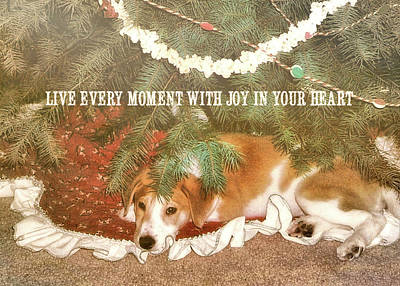Photograph - A Puppy For Christmas Quote by JAMART Photography