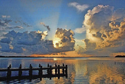 Photograph - A Ray Of Sunshine by HH Photography of Florida