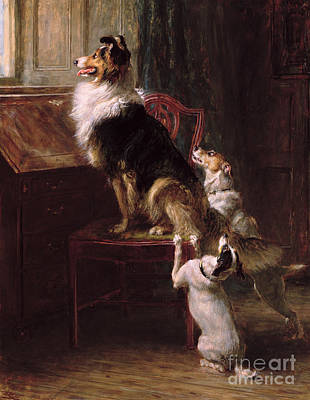 Painting - A Reserved Seat, 1901  by Briton Riviere