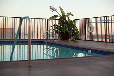 Photograph - A Roof Garden With Swimming Pool by Frank Rothe