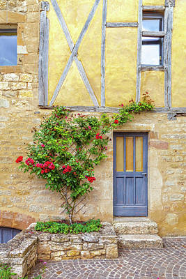 Photograph - A Rose Climbs A Medieval Wall by W Chris Fooshee