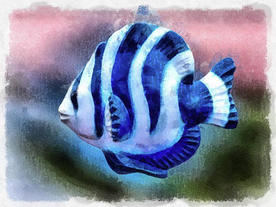 Digital Art - A Single Angel Fish by Leslie Montgomery