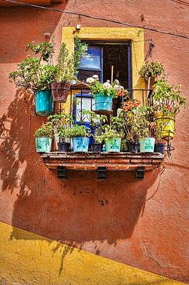 Photograph - A Small Suspended Garden In Mexico by Tatiana Travelways