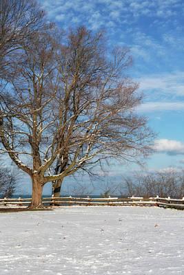 Photograph - A Snowy Morning by Kim Hojnacki
