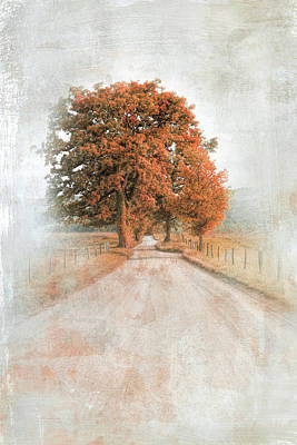Photograph - A Solitary Road In Autumn by Jai Johnson
