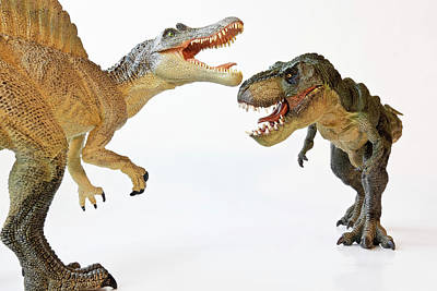 Studio Grafika Zodiac - A Spinosaurus Faces Off with A Tyrannosaurus Rex  by Derrick Neill