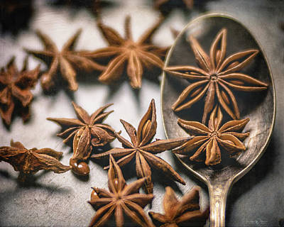 Photograph - A Spoonful Of Stars By Tl Wilson Photography by Teresa Wilson