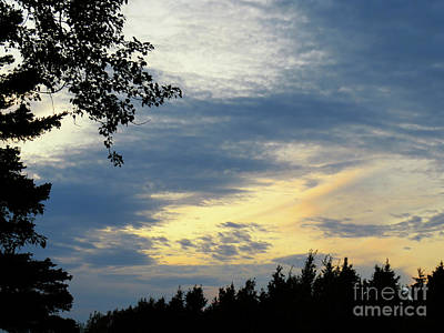 Owls - A sunset in Petite Matane-Gaspesie by Celine Bisson