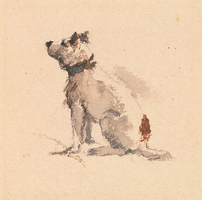 Drawing - A Terrier, Sitting Facing Left by Peter De Wint
