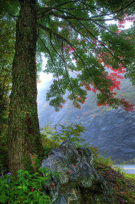 Photograph - A Touch Of Fall by Dan Carmichael