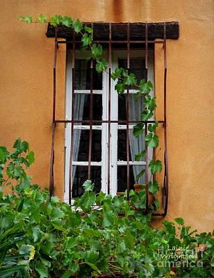 Photograph - A Vine Artfully Climbs by Lainie Wrightson
