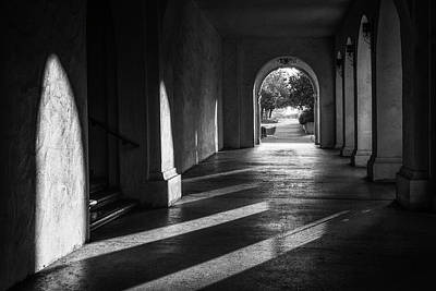 Photograph - A Walk Among Shadow And Light by Joseph S Giacalone