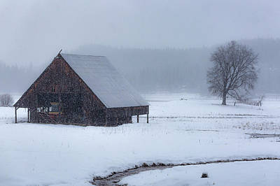 Photograph - A Winter Scene by PhotoWorks By Don Hoekwater