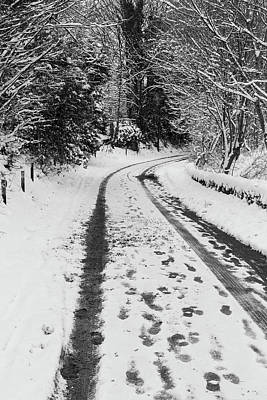 Photograph - A wooded lane in snow by Diarmid Weir