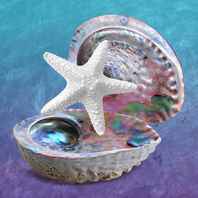 Photograph - Abalone And Sea Star Blues by Gill Billington