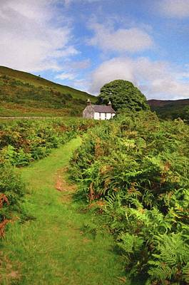 Photograph - Abandoned House In Wicklow Hills by Jenny Rainbow