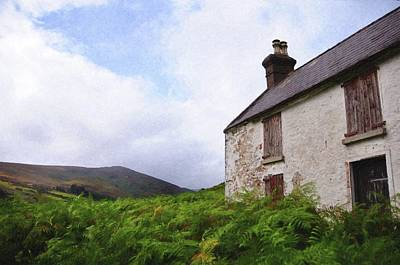 Photograph - Abandoned House. Wicklow Hills 1 by Jenny Rainbow