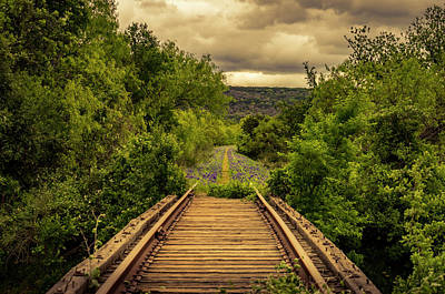 Photograph - Abandoned Railroad by David Morefield
