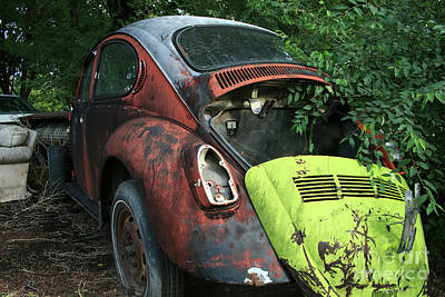 Photograph - Abandoned Super Beetle by Tony Baca